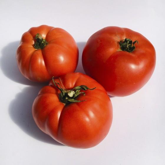 Euskal tomatea